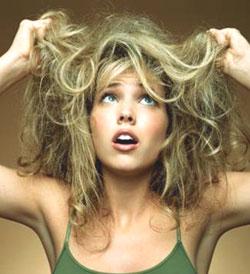 La cosmética israelí para los cabellos el aceite